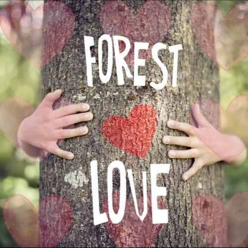 activism-forest-love-square